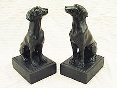 Vizsla Hungarian hunting dog Bookends